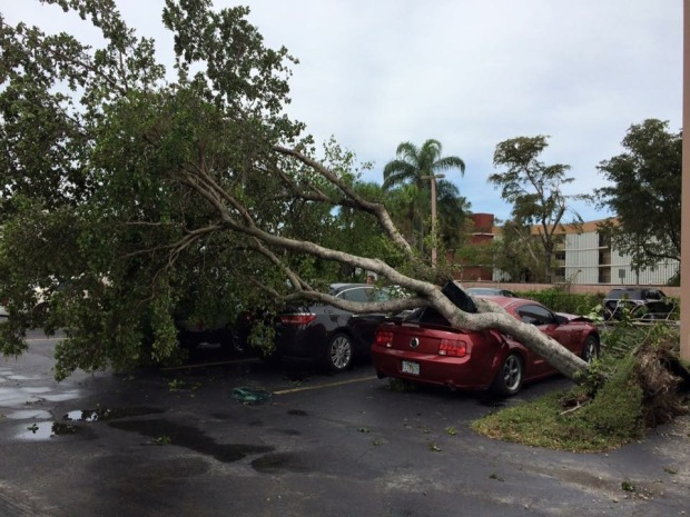 NBC 6 Viewer Storm Photos: Feb. 16, 2016
