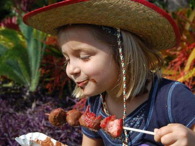 [MI] Hot Topic: Fairchild Tropical Garden Chocolate Festival