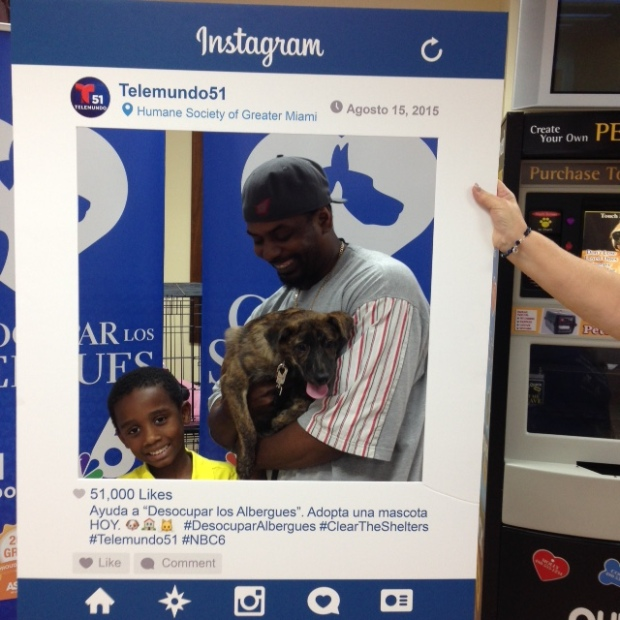 2015 ClearTheShelters Adopted Animals Humane Society of Greater Miami