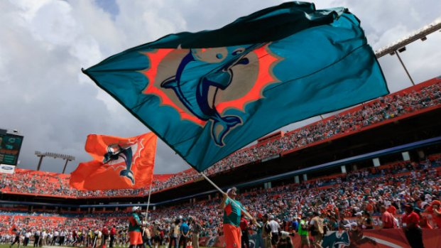 Dolphins-Raiders: Victory in Photos