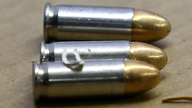[MI] No Celebratory Gunfire on New Year's Eve, Miami Officials Urge