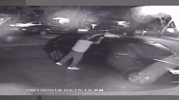 [MI] Car Arsonist Caught on Camera