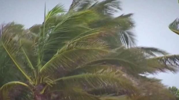 [MI] Dania Beach Bracing For Irma's Impact