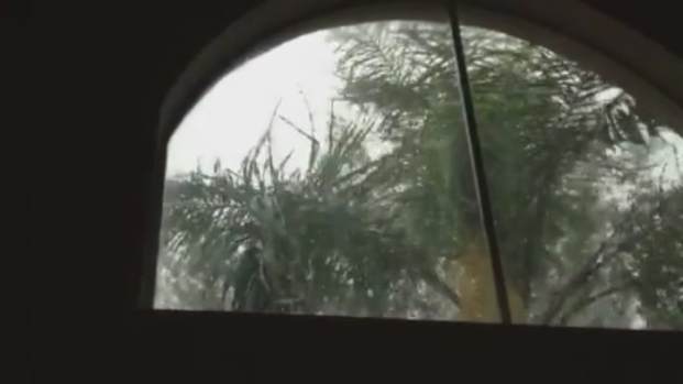 [MI] RAW VIDEO: Hail in Coral Springs