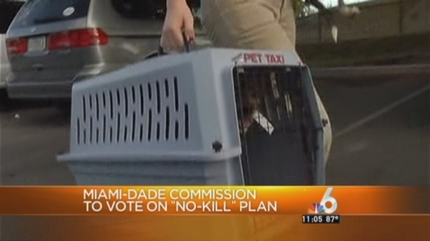 [MI] Miami-Dade Commission Approves Plan that Will Stop the Killing of Adoptable Cats and Dogs