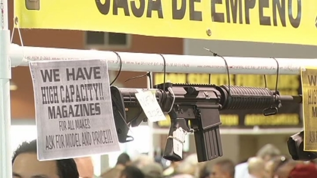 [MI] Debate Over Proposed Assault Weapons Ban