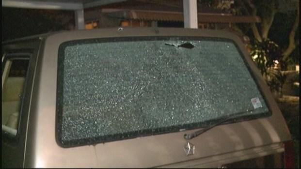 [MI] Woman Shot and Killed in Miami