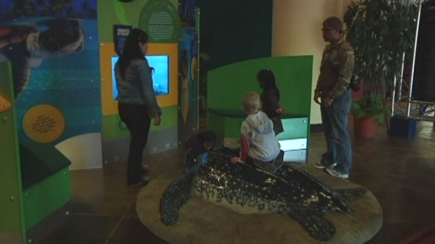 "[MI] ""Crittercam"" Exhibit at Zoo Miami Shows World Through Eyes of Turtles, Penguins and Bears"