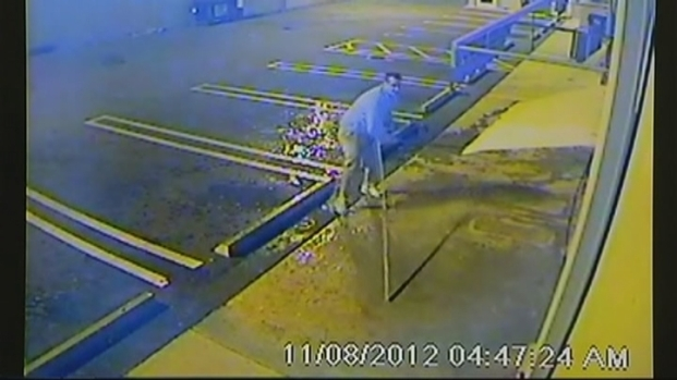 [MI] Copper Metal Thief Yanks Pipe Off Warehouse: Video
