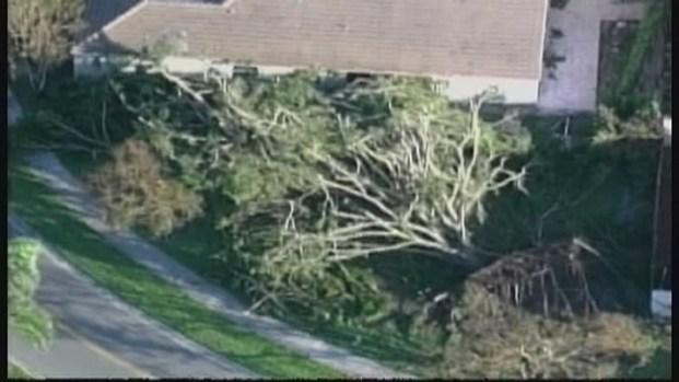 [MI] Hurricane Season Preparation in Miami-Dade