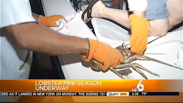 [MI] How to Stay Safe During Lobster Mini-Season