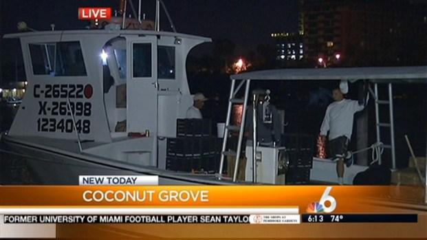 [MI] Florida's Stone Crab Season Begins