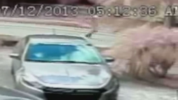 [MI] Detectives Release Surveillance in Hollywood Shooting