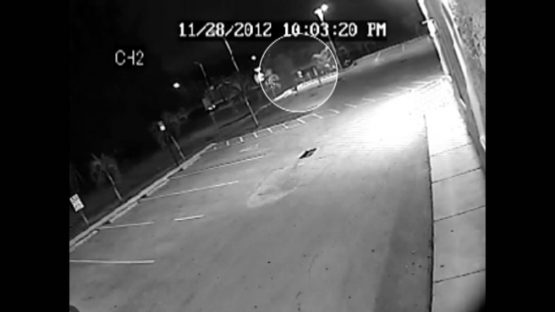 [MI] RAW VIDEO: Miami Gardens Homicide Victim