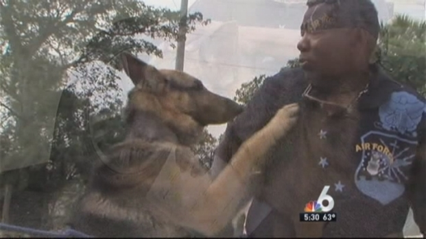 [MI] Stolen Dog Reunited with Miramar Man Ten Months Later