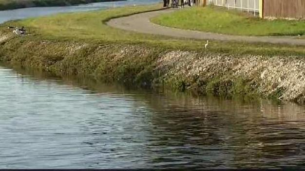 Dive Teams Rescue Boy from Near Drowning