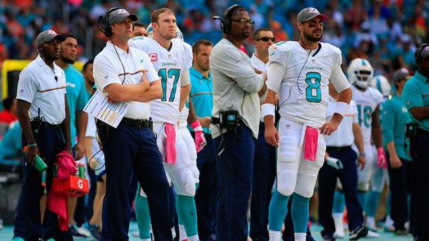 Week 14 Preview: Cardinals at Dolphins