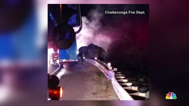 Elephants Evacuated From Burning Truck in Ga. Highway Fire