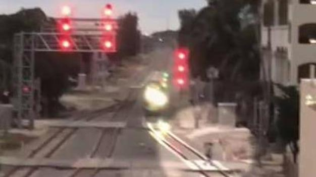Pedestrian Walks In Front of Brightline Train