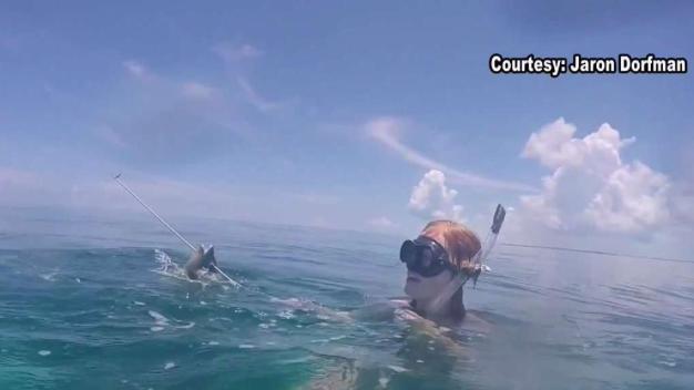 Shark Bite Victim Speaks Out