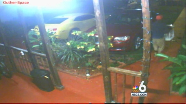 Little Havana Bird Theft Caught on Camera: Police