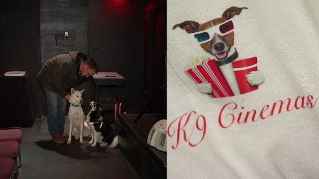 Movie Theater for Dogs, Owners Opens in Texas