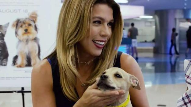 6 in the Mix Host Adopts Dog