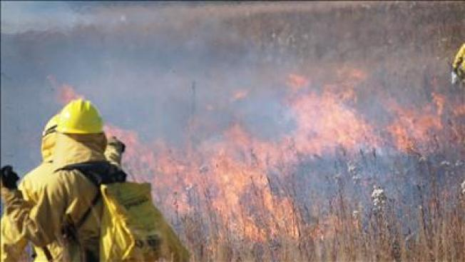 Prescribed Burns Planned for 2 Florida State Parks