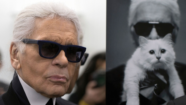 Karl Lagerfeld's Cat Choupette Could Be Set to Inherit a Fortune