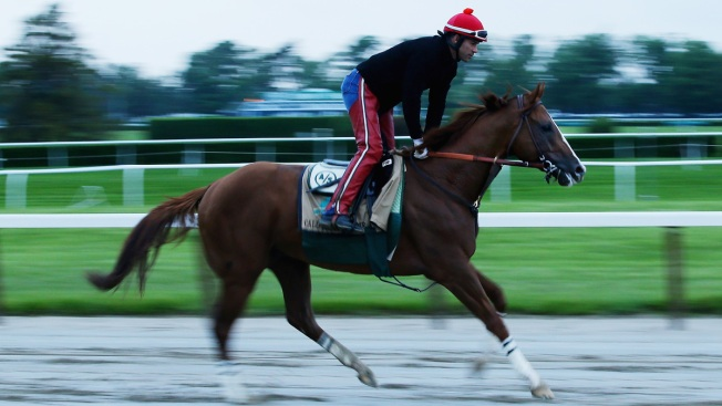 California Chrome Gallops 2 Miles at Belmont Park