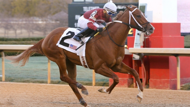 """Pretty Hairy"" Lightning Kicks Off Derby Week at Churchill Downs"