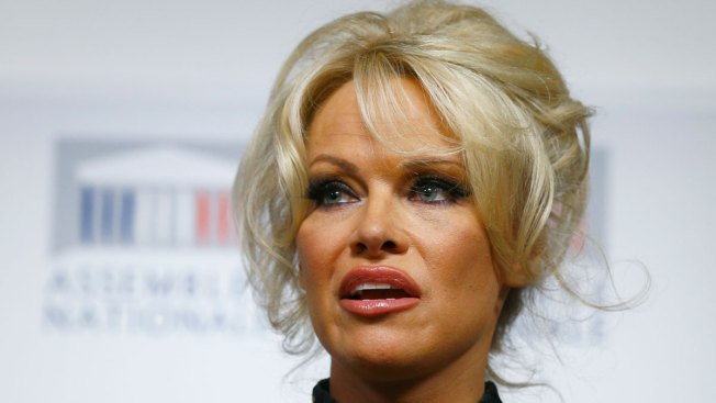 Former Playmate Pamela Anderson: 'Porn Is for Losers'