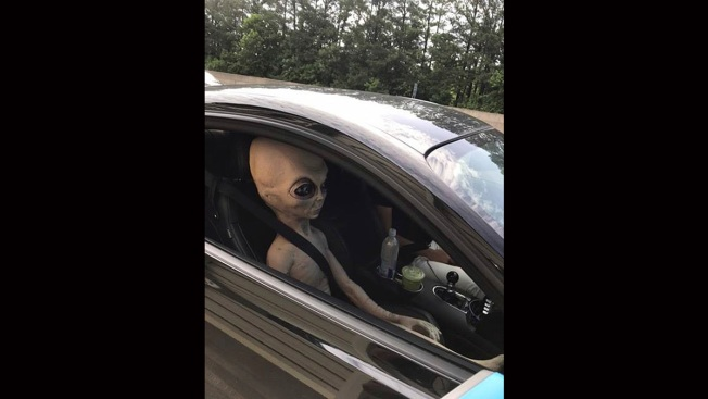Take Me to Your Driver: Speeding Man Had Alien Doll Passenger