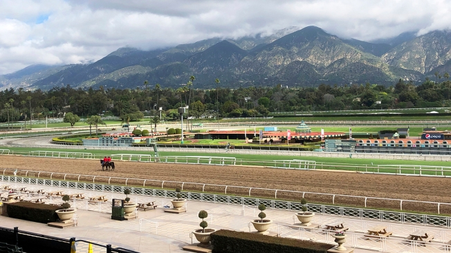 28th, 29th Horses Die at Santa Anita Park Since Dec. 26