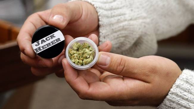 These 9 States Will Vote on Legalizing Pot in November