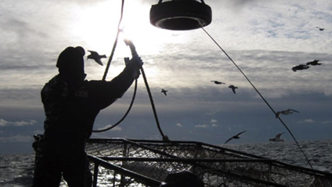 Tony Lara From Discovery's 'Deadliest Catch' Dies in S.D.
