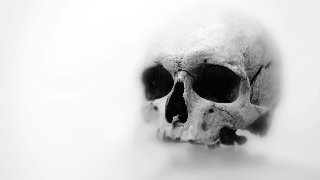 Homeless Man Brings Human Skull in Publix