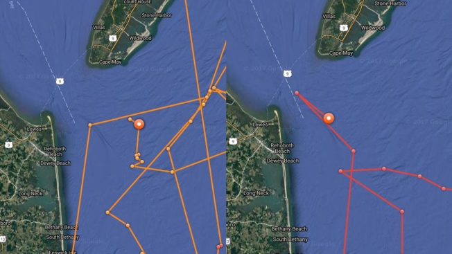 Famous NY shark spends holiday weekend at Jersey Shore