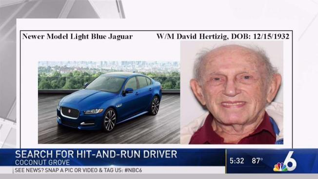 Search For Hit And Run Driver In Coconut Grove