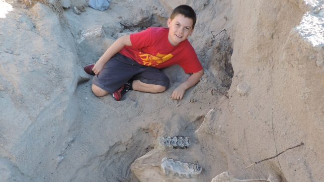 10-Year-Old Boy Trips Over 1.2M-Year-Old Fossil in Desert