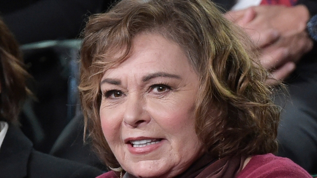 Roseanne Barr to Appear on TV for First Time Since Firing