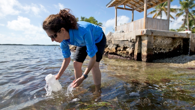 Yoga Pants, Cozy Clothes May Be Key Source of Sea Pollution