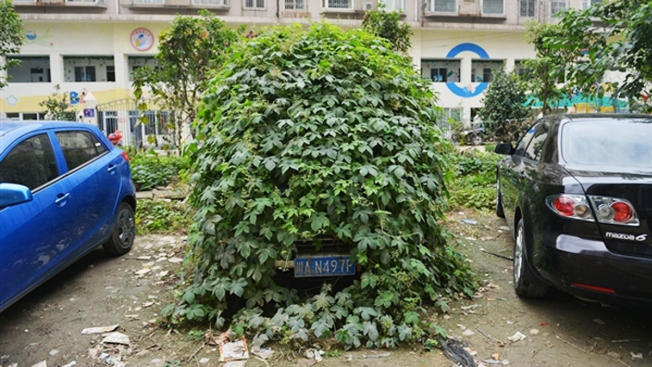 """""""Zombie Car"""" Abandoned in China"""