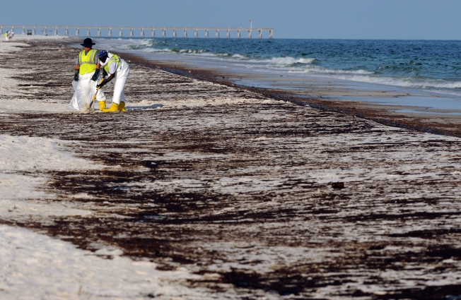 Four Years After BP Spill, Beach Monitors Still on the Job