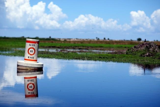 Florida's Lake Okeechobee Hits Highest Water Level in 12 Years