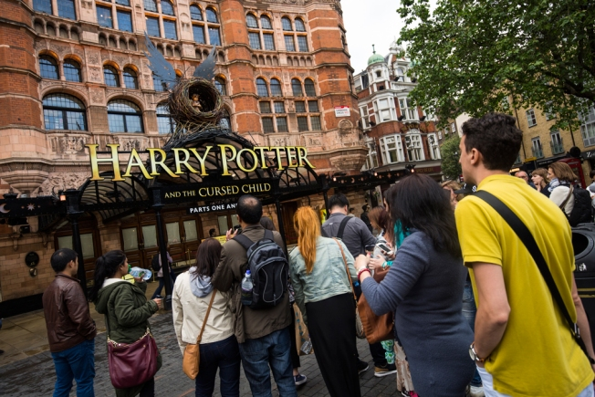 Harry Potter Play Removes Live Owls After Bird Flies Coop