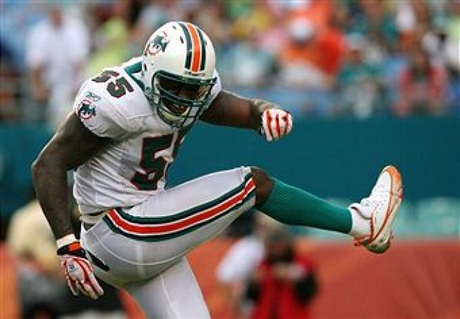 Oops! Joey Porter Back With the Dolphins