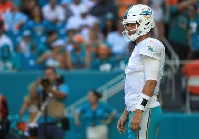 Miami Dolphins Lose to Tampa Bay Buccaneers as Jay Cutler Exits Game With Injury