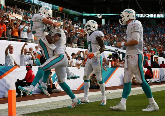 Miami Dolphins Fans Ecstatic About 3-0 Team