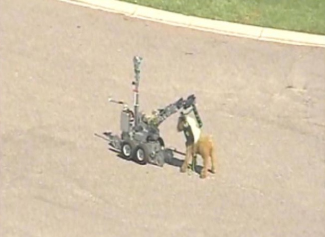 """Suspicious"" Stuffed Pony Blown to Bits Outside Elementary School"